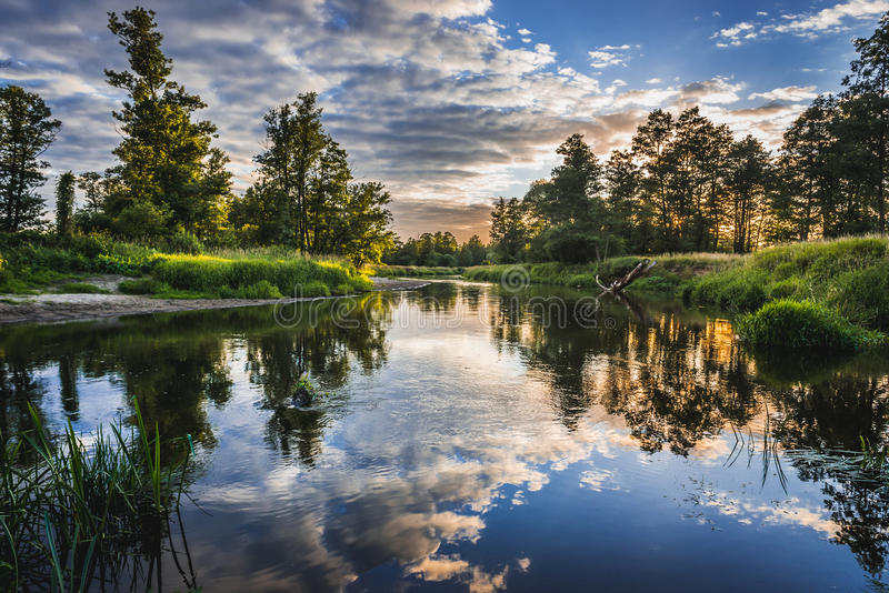 Liwiec-Fluss in Polen stockfotografie