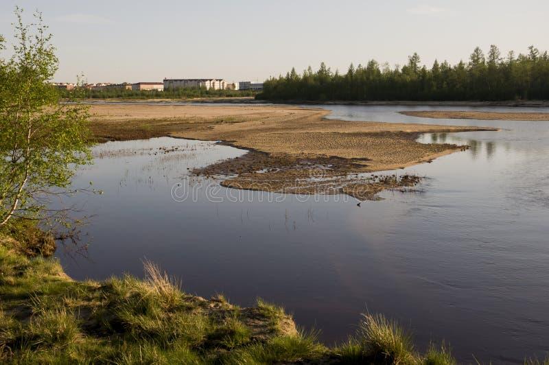 Lixe a praia do rio com arbustos e as árvores verdes imagem de stock
