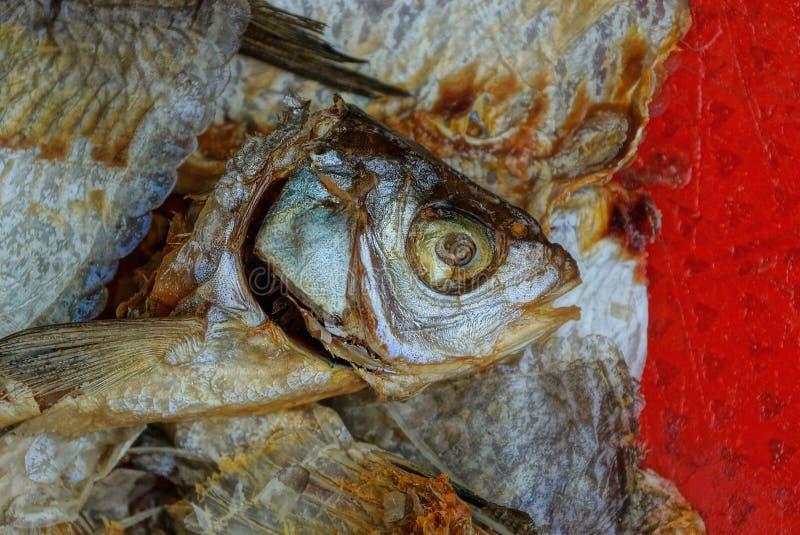 Lixo de uma pilha das partes de peixes dos ossos e das cabe?as fotografia de stock royalty free