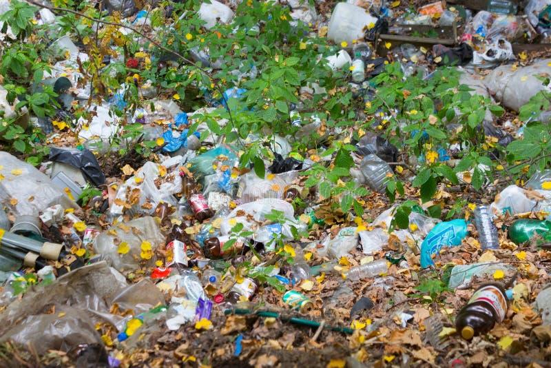 Lixo na floresta imagem de stock
