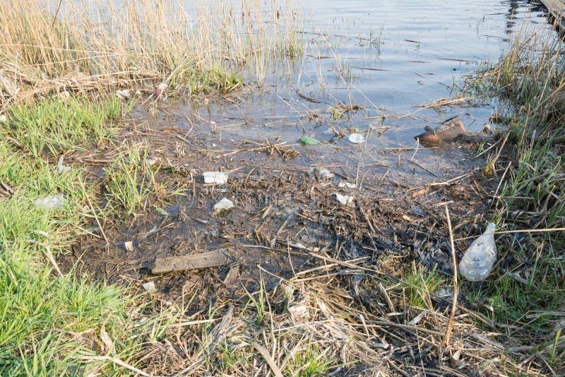 lixo plástico do lago imagem de stock royalty free
