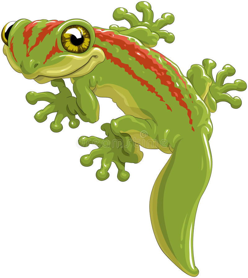Lizard stock illustration