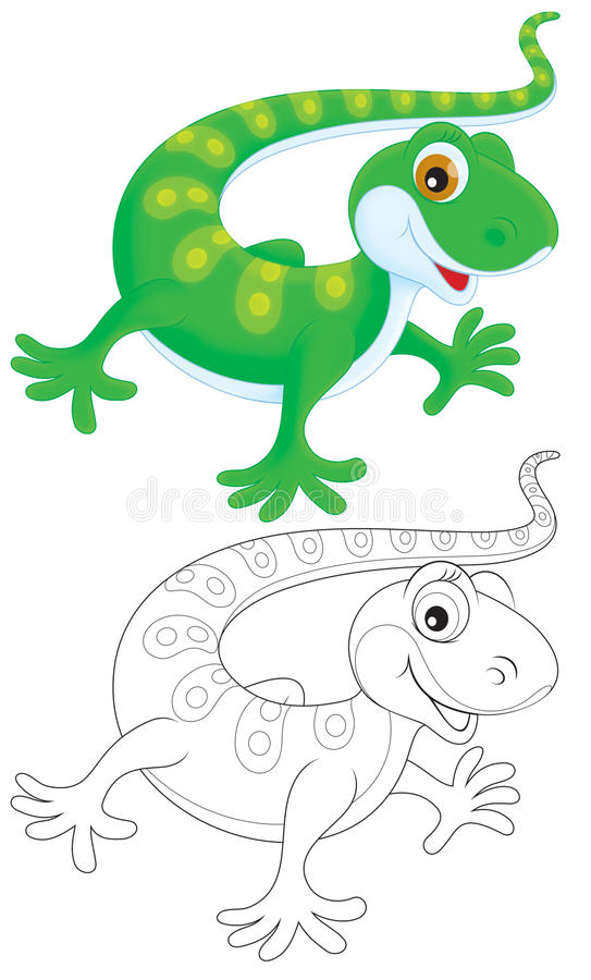 Download Lizard stock illustration. Image of over, lizard, animal - 27638108