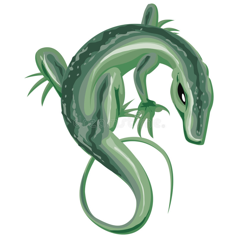 Lizard With Clipping Path vector illustration