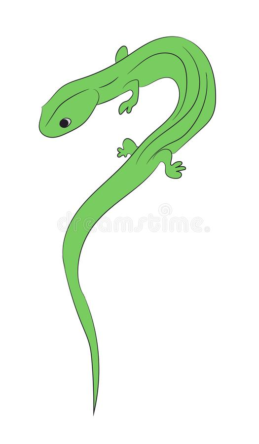 lizard color vector stock vector illustration of background 113475380