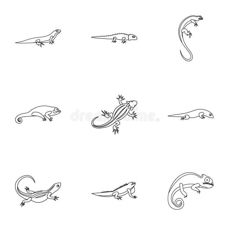 Lizard icons set, outline style. Lizard icons set. Outline illustration of 9 lizard icons for web vector illustration