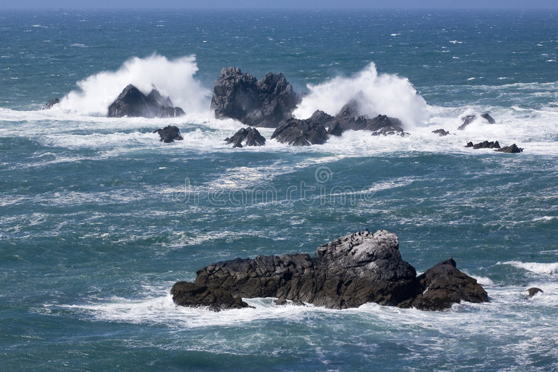 Lizard Point royalty free stock images