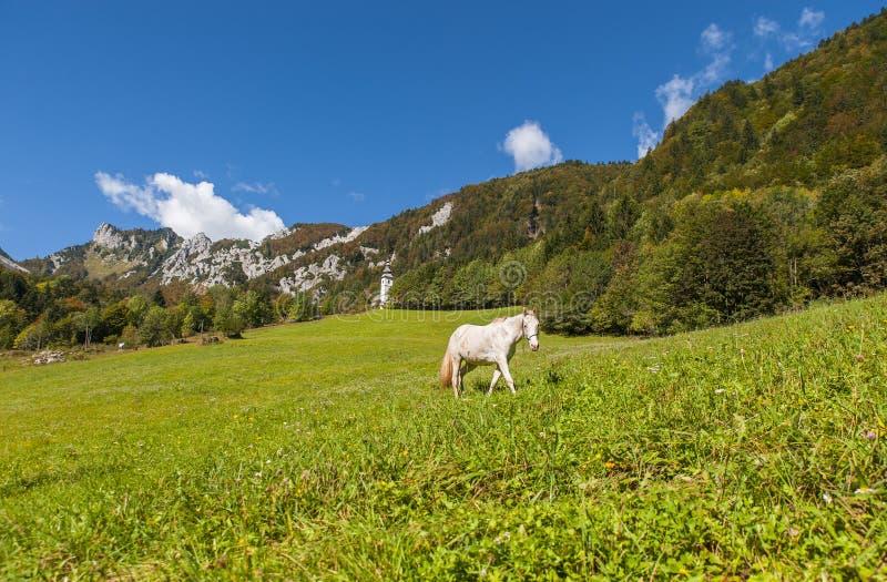 Ljubelj mountain pass, nature, Slovenia. Ljubelj mountain pass in Slovenia, Europe royalty free stock images