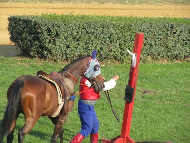 Ljubicevo骑马者比赛 免版税库存图片