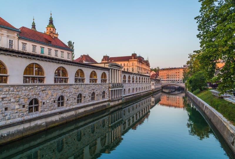 Ljubljana Środkowy rynek od rzeki w ranku obrazy royalty free