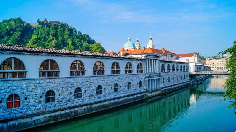Ljubljana brzeg rzeki 3 fotografia royalty free
