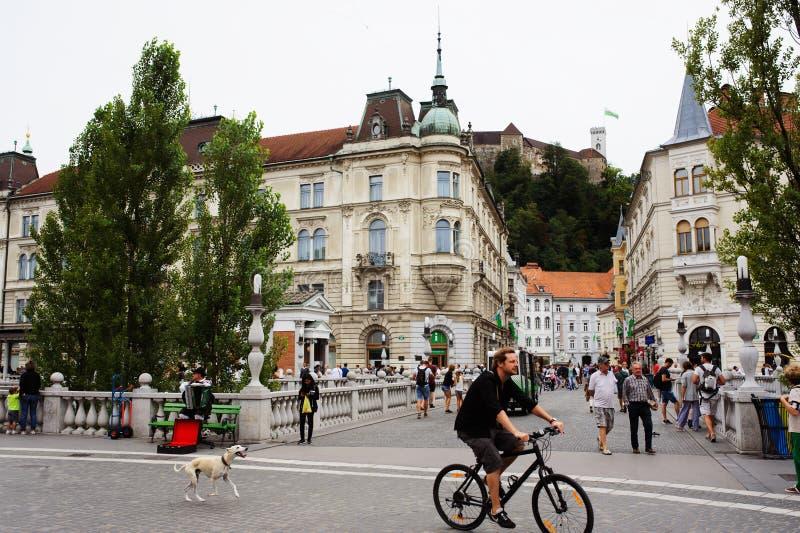 Ljubljana Eslovenia - 15 de agosto de 2017 2015 - castillo del ` s de Ljubljana y vieja opinión de la ciudad fotos de archivo