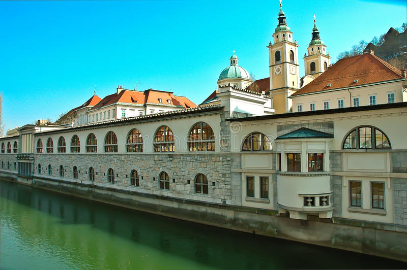Ljubljana fish market stock photography