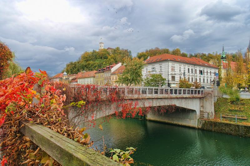 Ljubljana, Slovenia waterfront. Fall foliage on trees lining waterfront of Ljubljana, Slovenia royalty free stock image