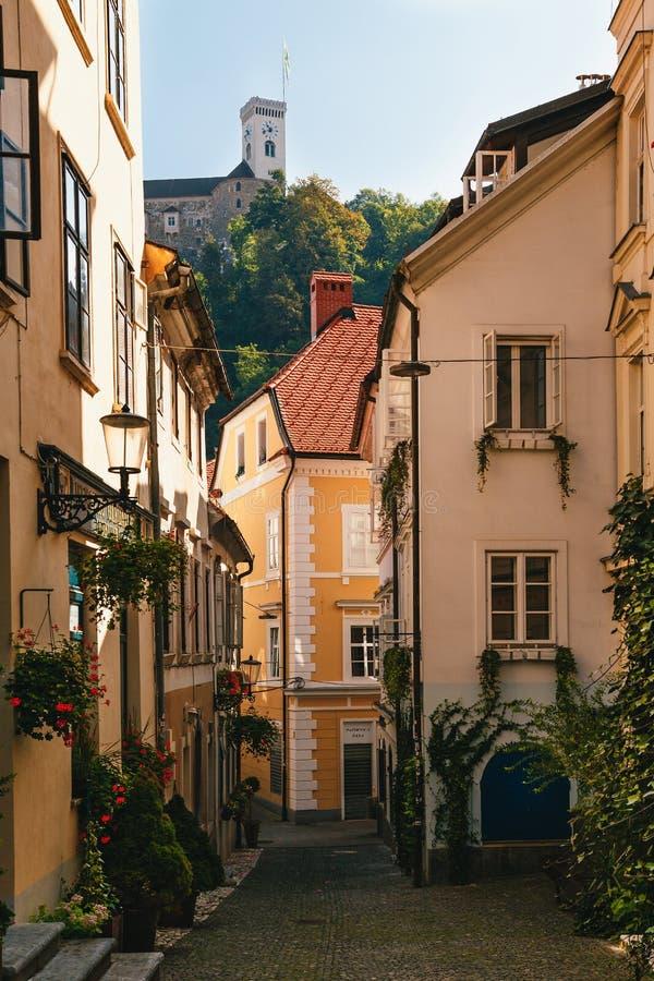 Ljubljana Slovenia, Wrzesień, -, 8 2018: Piękna zaciszność przesmyka ulica bez ludzi dekorował z kwiatami w centre zdjęcie stock