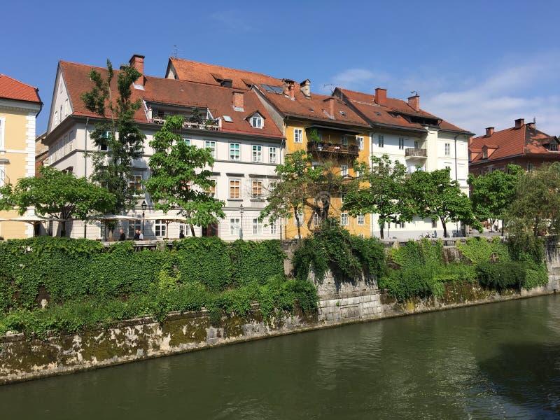 Ljubljanica rzeka zdjęcia stock
