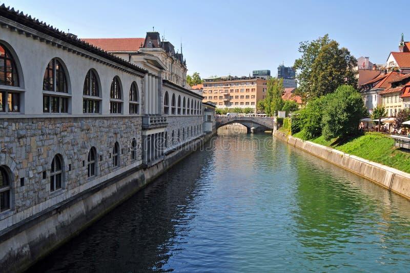 Ljubljanica rzeka i trójka mosty w tle, Ljubljana fotografia royalty free