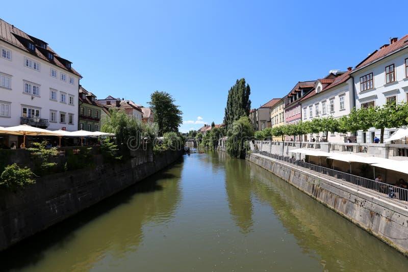 Ljubljanica rzeka płynie przez centrum Ljubljana zdjęcia royalty free