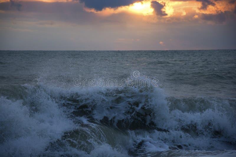 Ljudet av havet royaltyfri bild