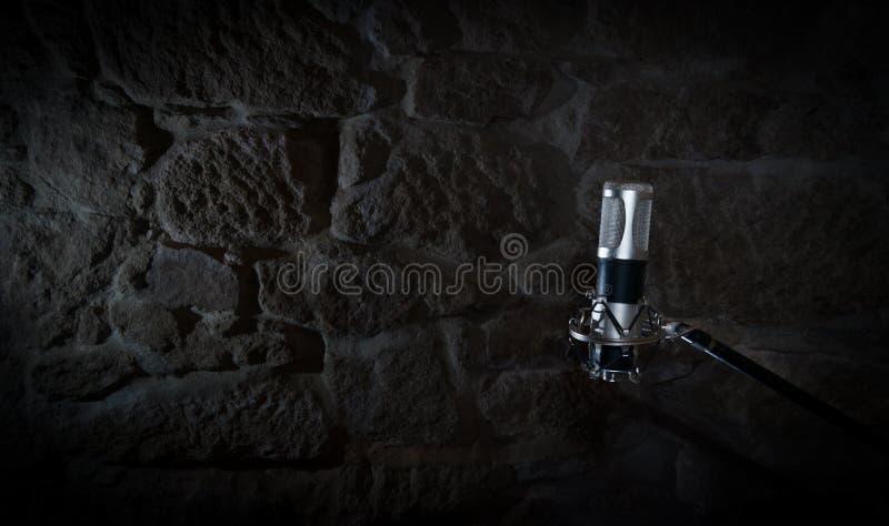 Ljudsignal mikrofon arkivbild
