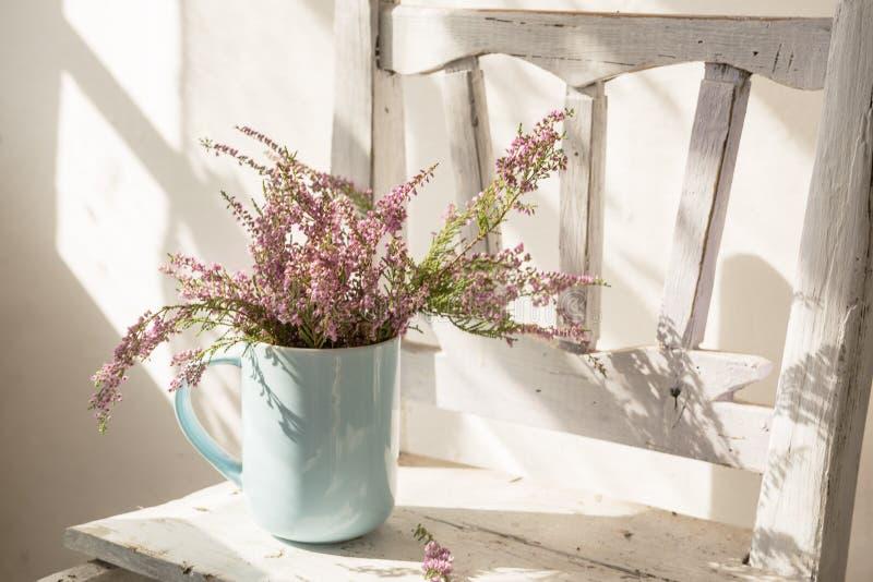 Ljung blommar i en kopp på en gammal vit stol royaltyfri bild