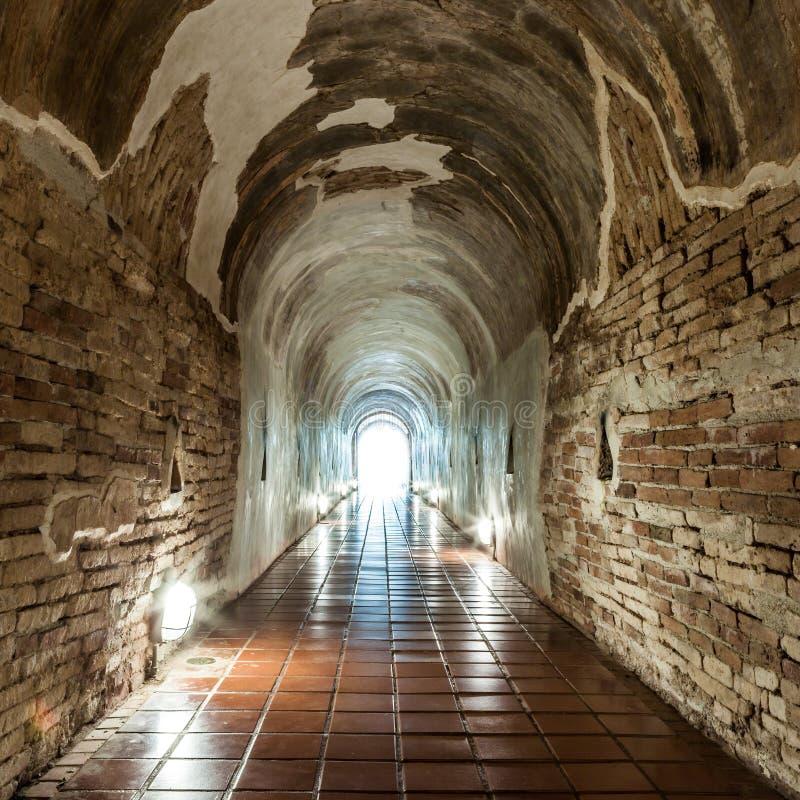 Ljus är kommande i Wat Umong Tunnel i Chiang Mai royaltyfri bild