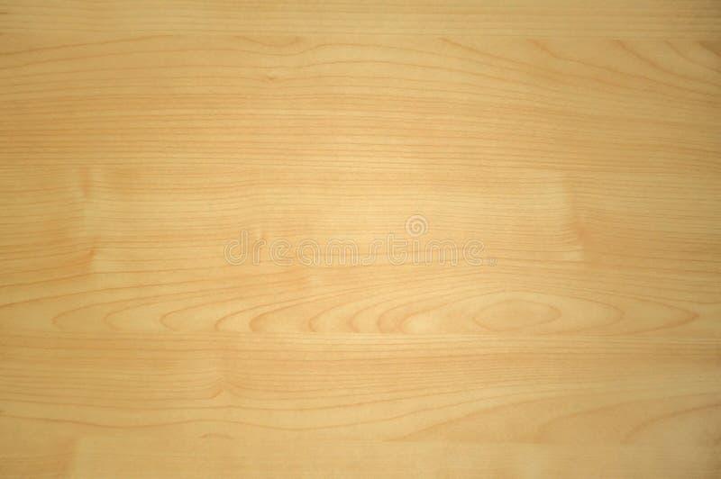 Ljus - bakgrund för textur för trä för brun ek arkivfoton