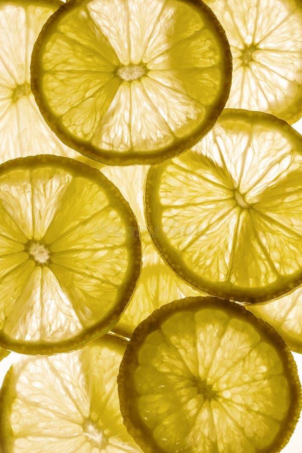 Ljus bakgrund med citrusfrukt av citronskivor, bakgrund arkivbilder
