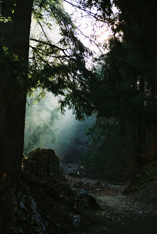 Ljus Bana Royaltyfria Bilder