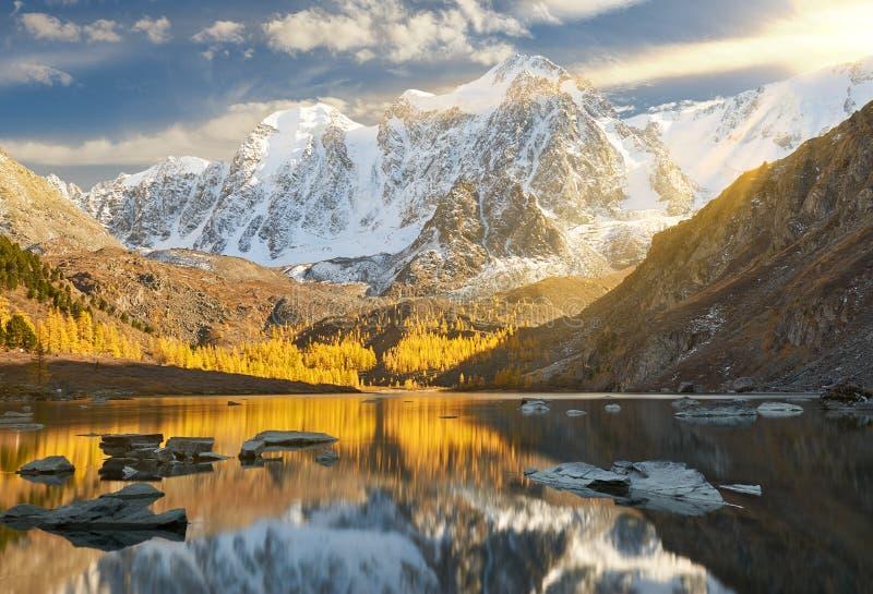Ljus färgrik gul höstbergsjö, Ryssland, Sibirien, Altai berg, Chuya kant arkivfoto