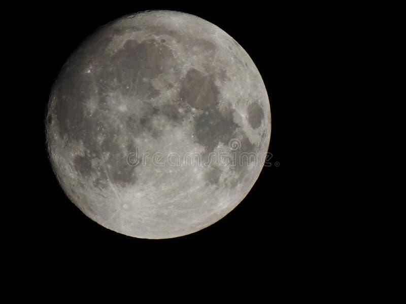 ljus fullmåne royaltyfri foto