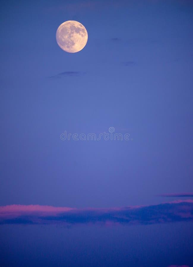 Ljus fullmåne i himmel för tidig afton med länge, rosa färg-färgad molnbank under royaltyfri fotografi