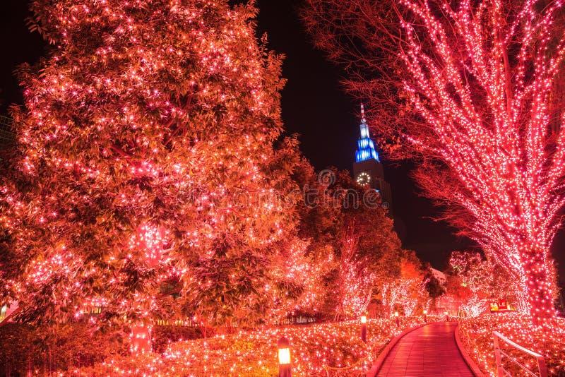 Ljus garnering för natt, vinterbelysning i Tokyo på det Shinjuku området, Japan royaltyfria bilder