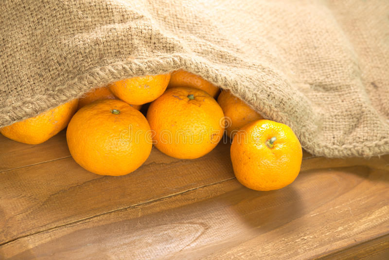 Ljus grupp av mandarinen royaltyfria foton