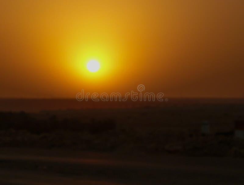 Ljus gul aftonsol över öken arkivbilder