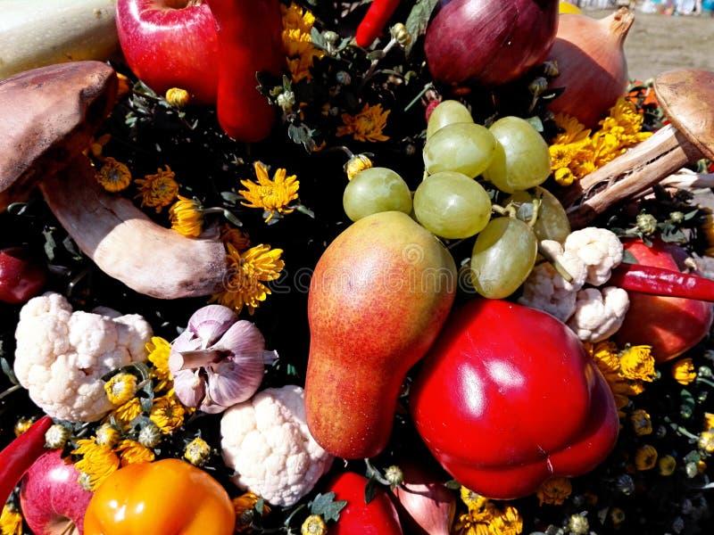 Ljus höstsammansättning av frukter och grönsaker royaltyfri fotografi