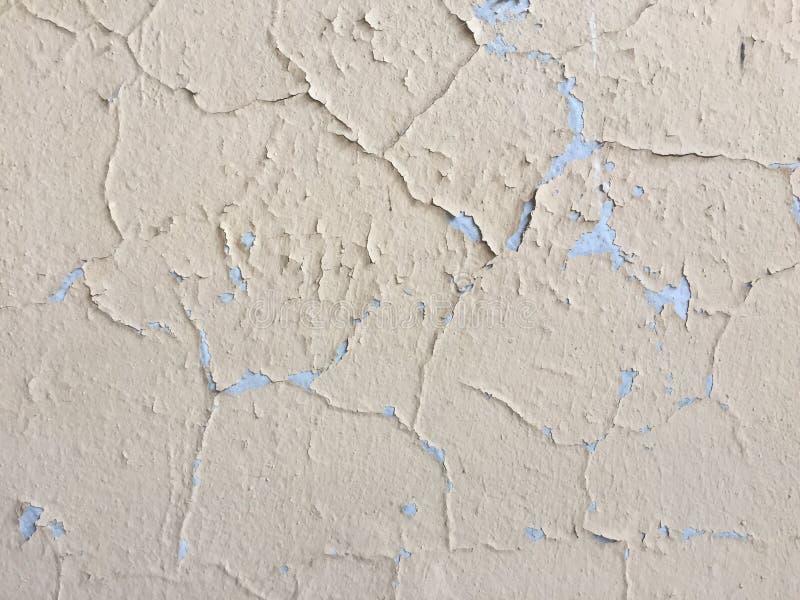 Ljus kräm- färgbakgrundstextur målade väggen med royaltyfri foto