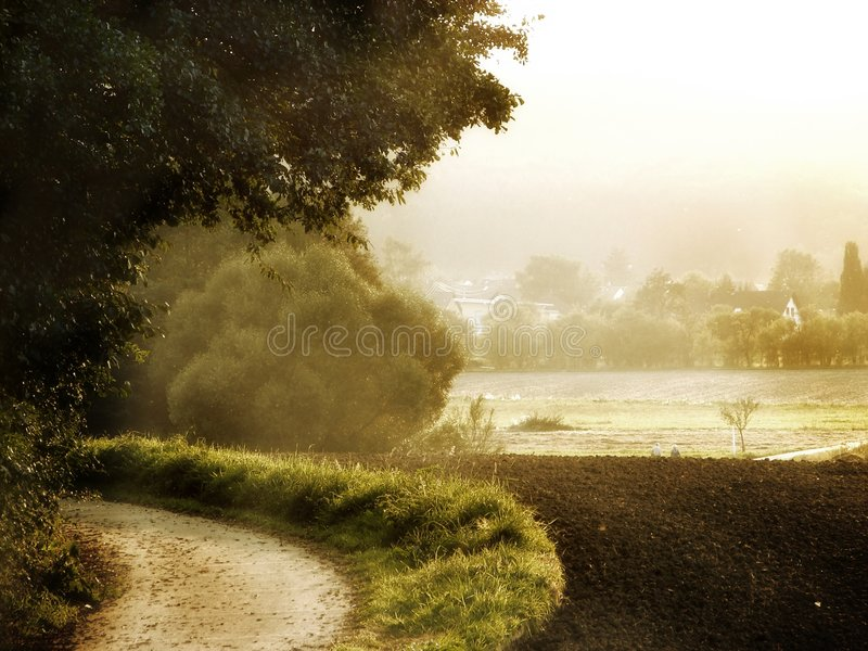 Download Ljus morgon arkivfoto. Bild av lantgård, fält, mood, äng - 229538