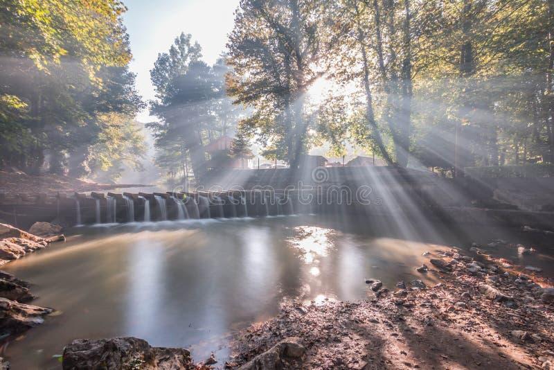 Ljus natur och mist för soluppgång arkivfoto