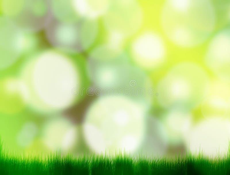 Ljus naturlig bakgrund arkivfoton