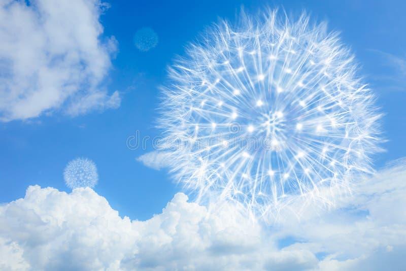 Ljus och luftig maskros på en blå bakgrund med moln Blowball som ett symbol av lightness, låg-kalori mat, lopp royaltyfri foto