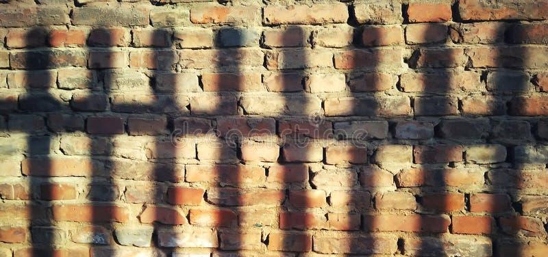 Ljus och skugga på väggen royaltyfri fotografi