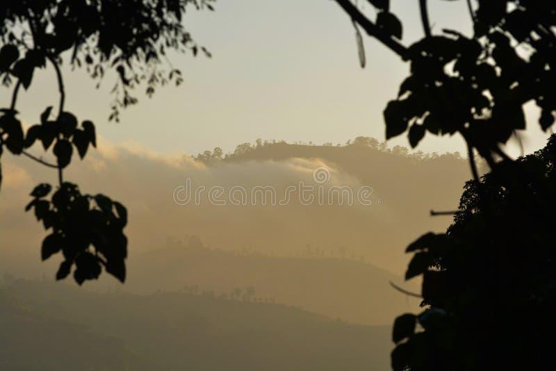 Ljus ogenomskinlighet av dimma mellan berg av Sri Lanka fotografering för bildbyråer