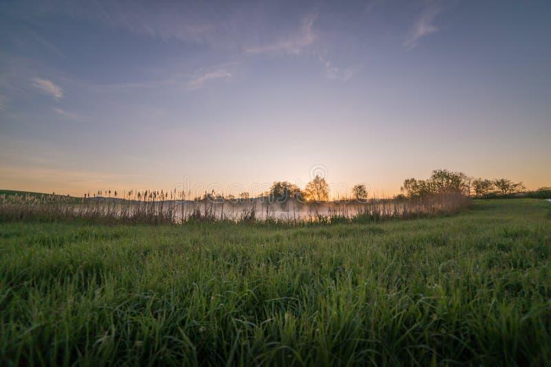 Ljus piercing för soluppgång till och med mist och träd och att reflektera in royaltyfri bild