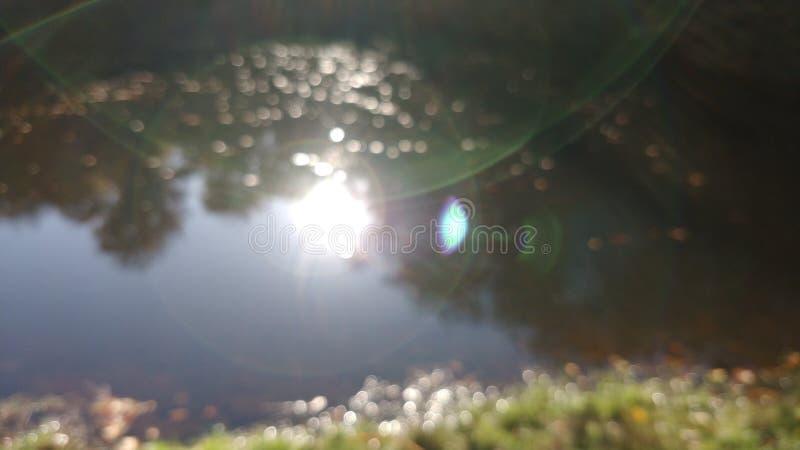 Ljus refraktion i kameralinsen royaltyfria bilder
