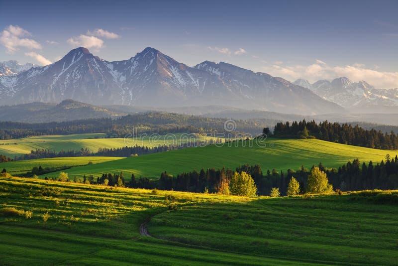Ljus rullande bygd i aftonljuset Pittoresk dag och ursnygg plats i vårtid Carpathian berg, Slovakien arkivfoton