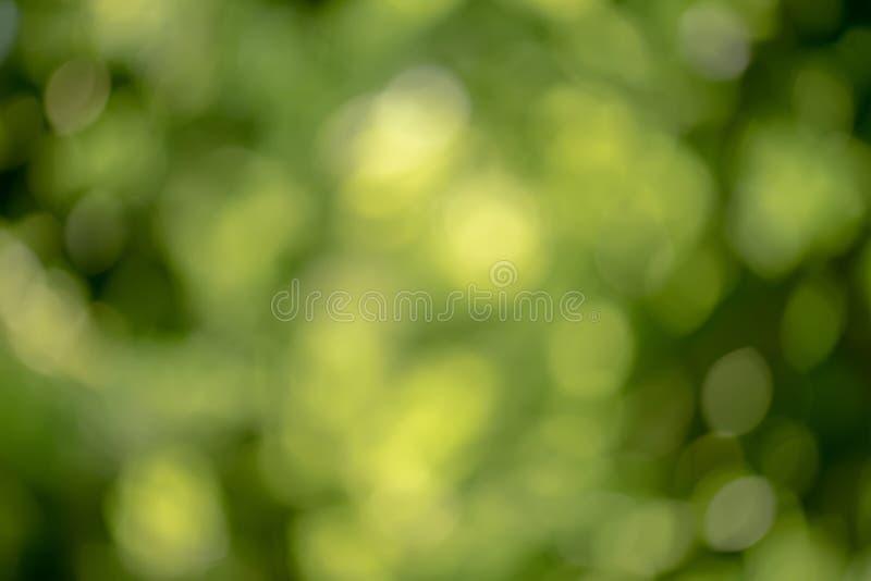 Ljus rundaljusbokeh på livlig grön smaragdfärgbakgrund arkivbild