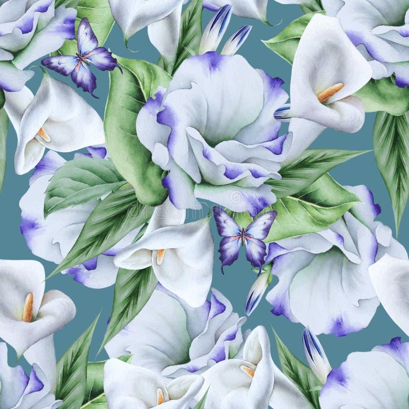 Ljus s?ml?s modell med blommor calla Eustoma f?r flygillustration f?r n?bb dekorativ bild dess paper stycksvalavattenf?rg royaltyfri illustrationer