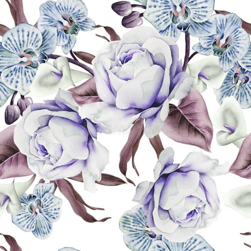 Ljus s?ml?s modell med blommor Steg Orkid? calla f?r flygillustration f?r n?bb dekorativ bild dess paper stycksvalavattenf?rg royaltyfri illustrationer