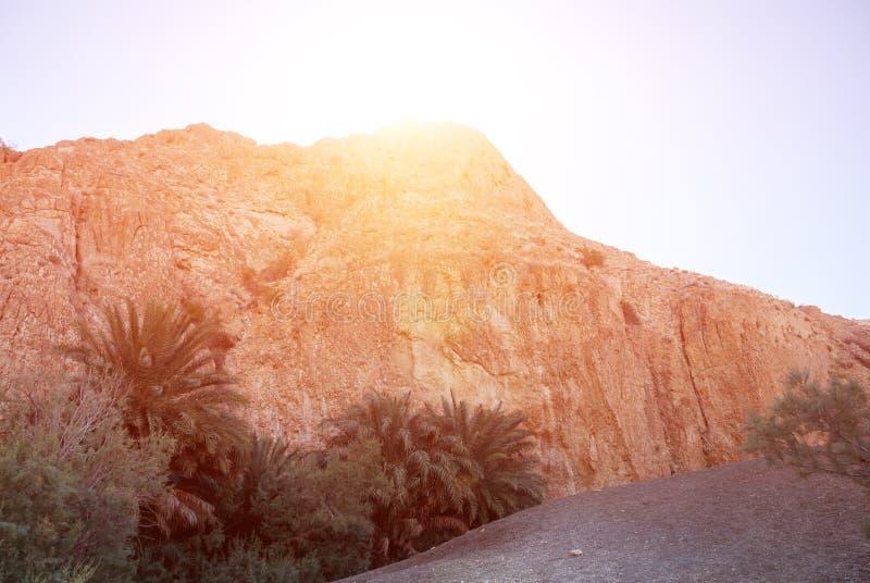 Ljus sol på zeniten bak konturn av ett berg royaltyfria bilder
